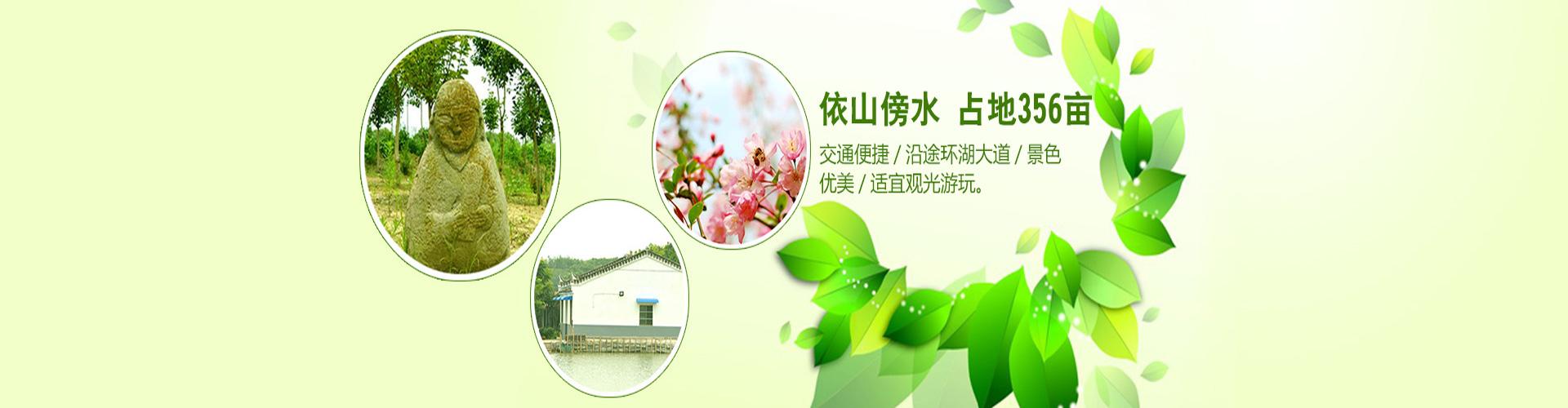 合肥木兰生态农业有限责任公司-banner1